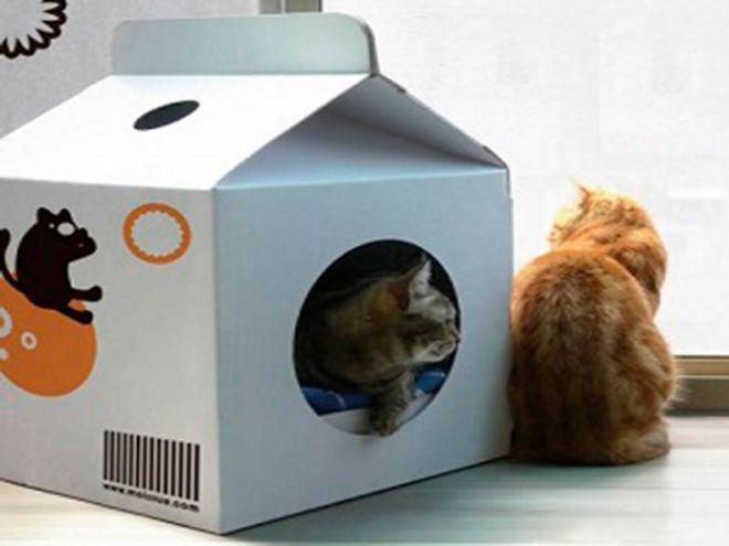 Домики для кошки и котят своими руками